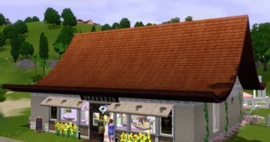 Les Sims 3 : Astuces pour bien gérer sa Boulangerie Délicieuse gourmandise !